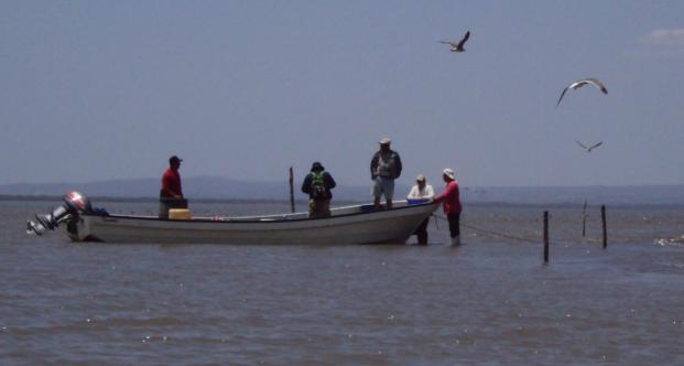 Adaptación en el Golfo de Fonseca