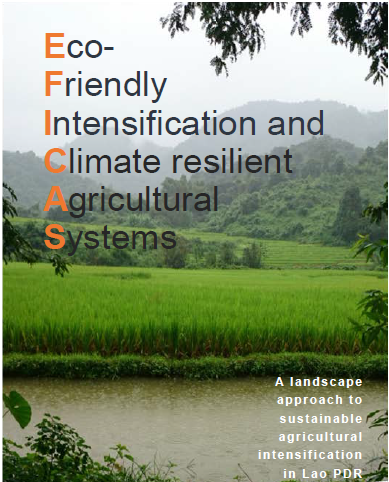eficas pic - climate adaptation.