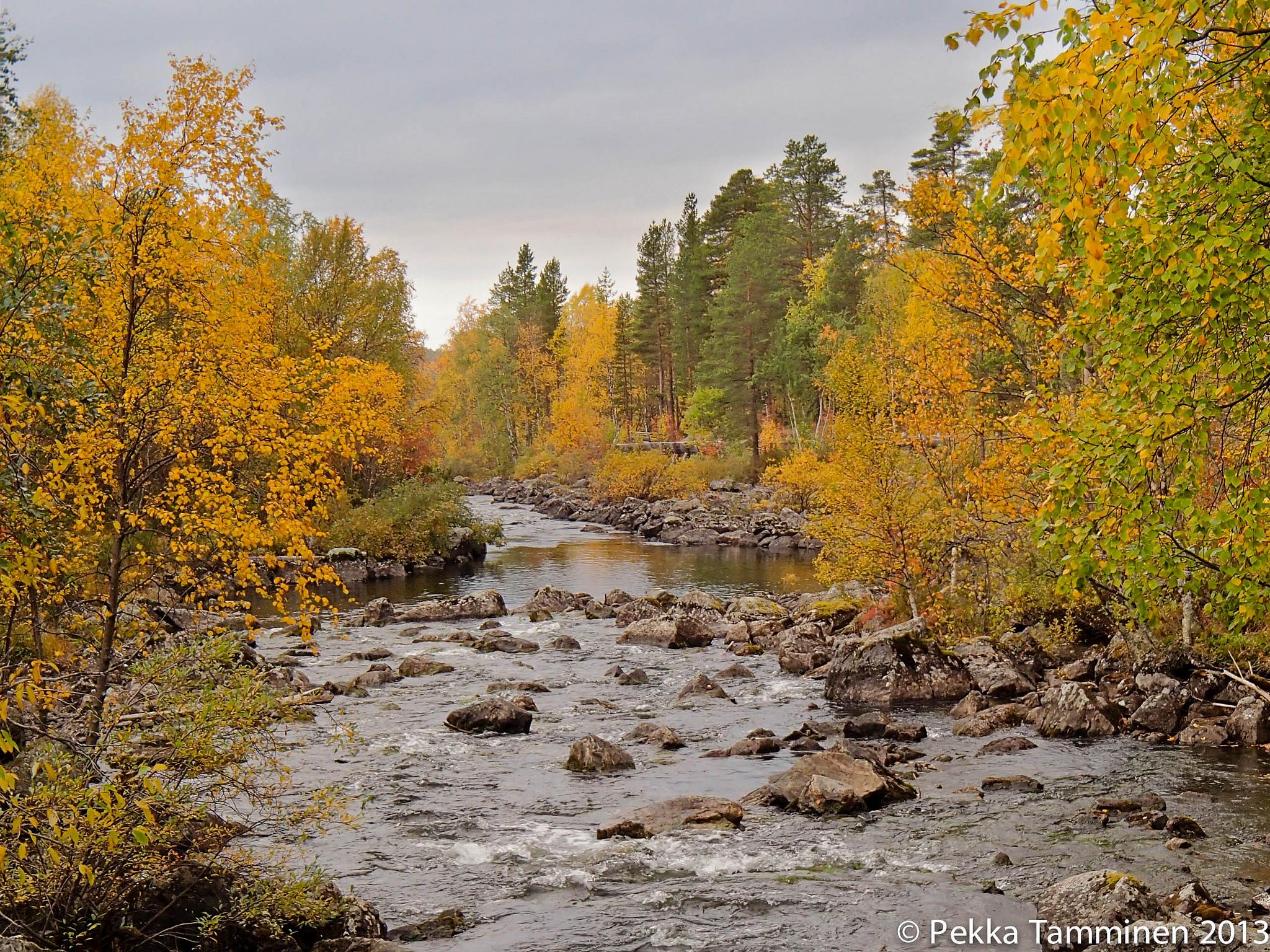 Picture credit: Pekka Tamminen