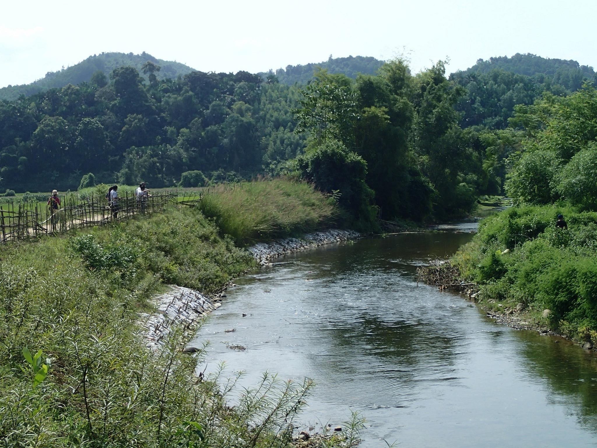 Natural river stabilisation technique