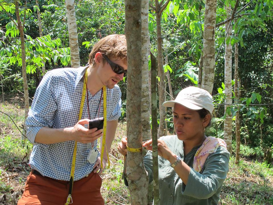 Smartphone based monitoring in agroforestry plot in Peruvian Amazon