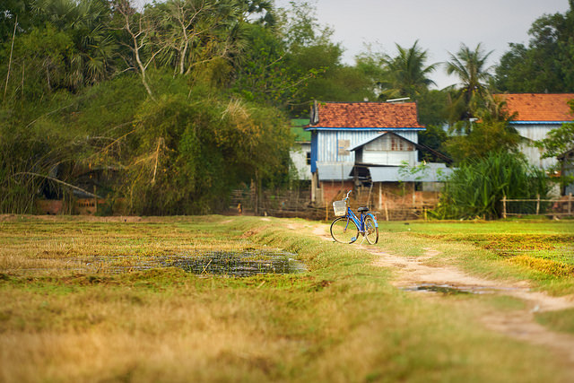 Bicycle parked on a field path in rural Cambodia, by Bryon Lippincott via Flickr.
