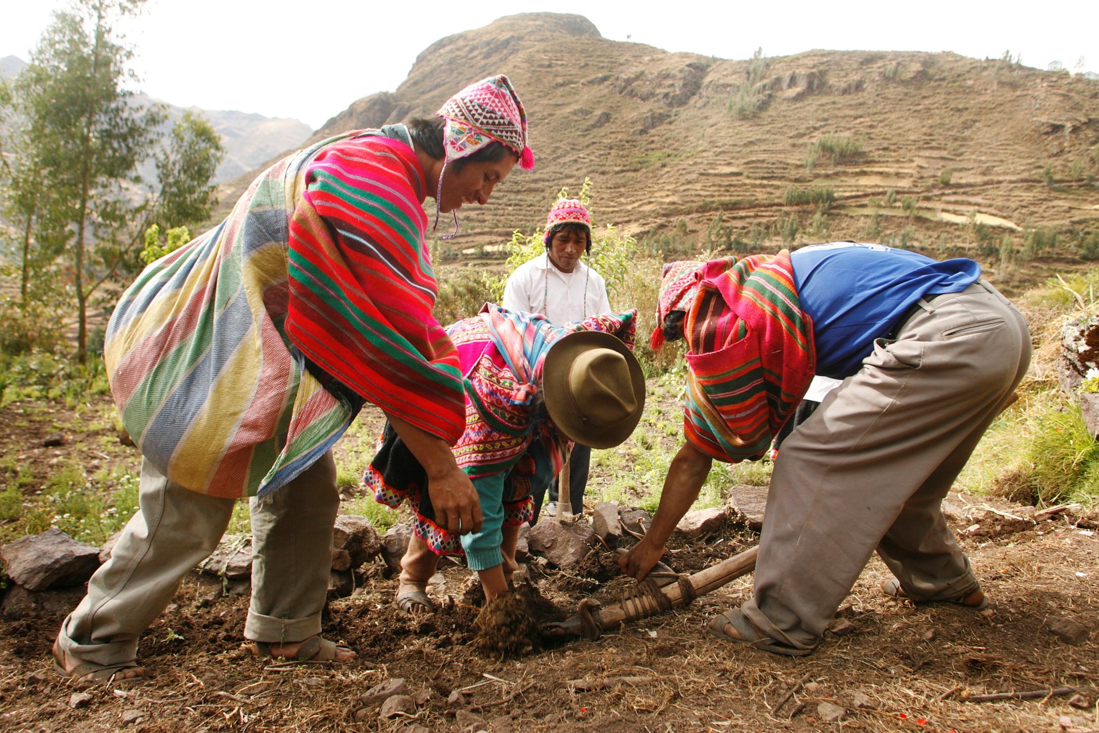 Smallholder farmers Peru ©Enrique Castro-Mendívil / PromPerú