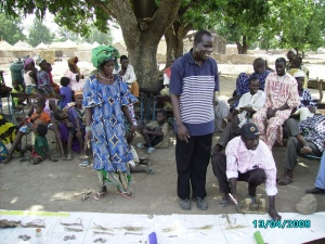 Developing a seasonal calendar in Mali