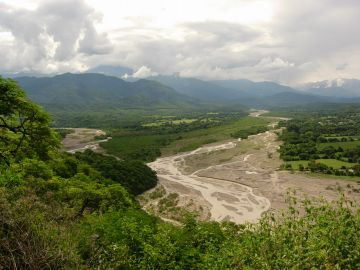 Adaptation strategies for the Jujuy model forest in NW Argentina