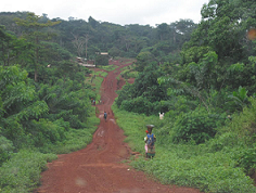 Current Vulnerability and Adaptive Capacity in East Cameroon