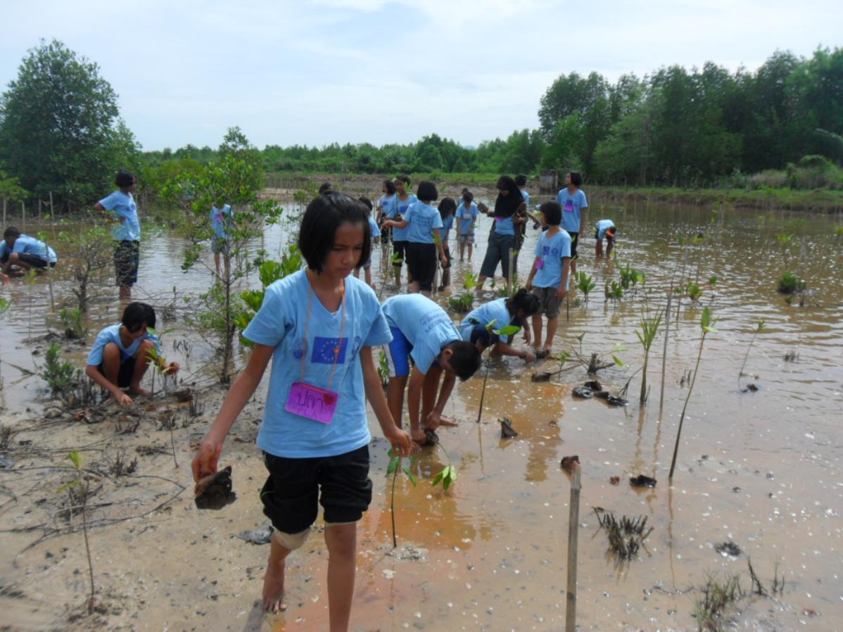Building coastal resilience to reduce climate change impact in Tambon Klong Yang, Amphur Koh Lanta, Krabi province, Thailand
