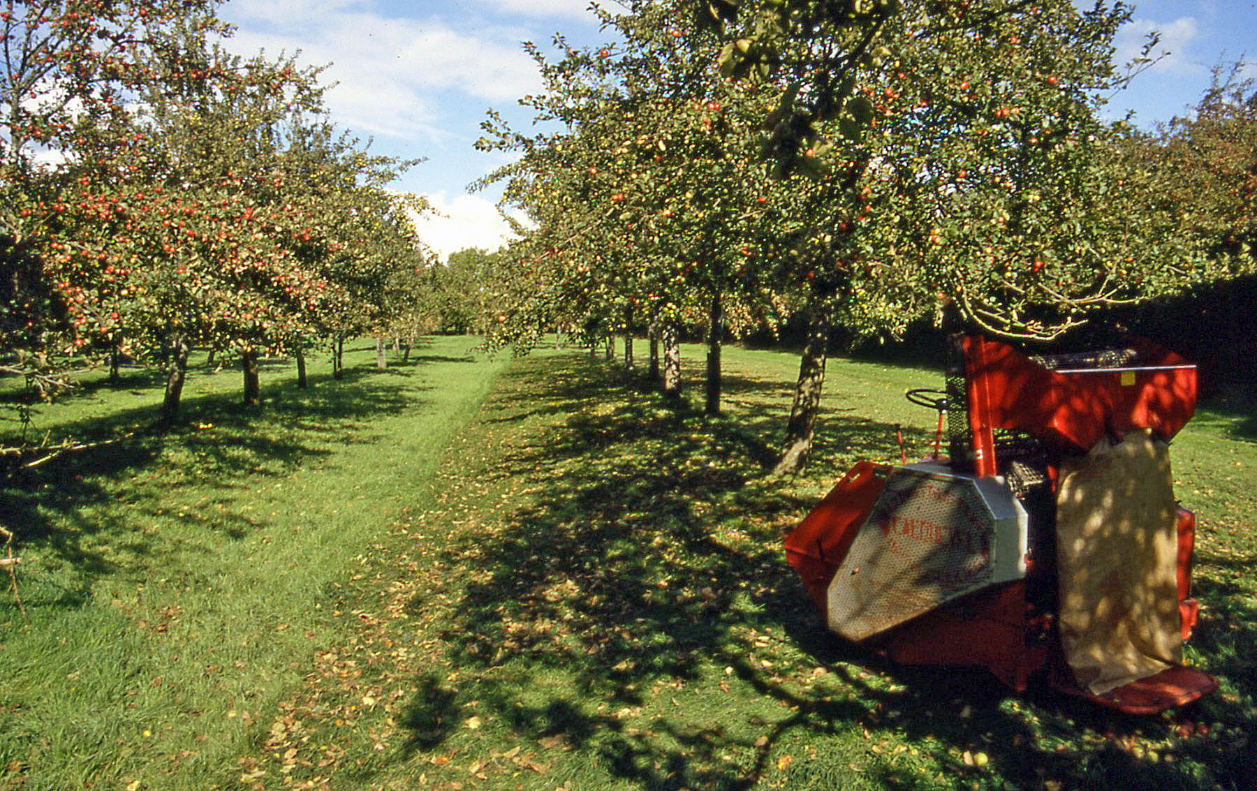 a changing climate for cider weadapt
