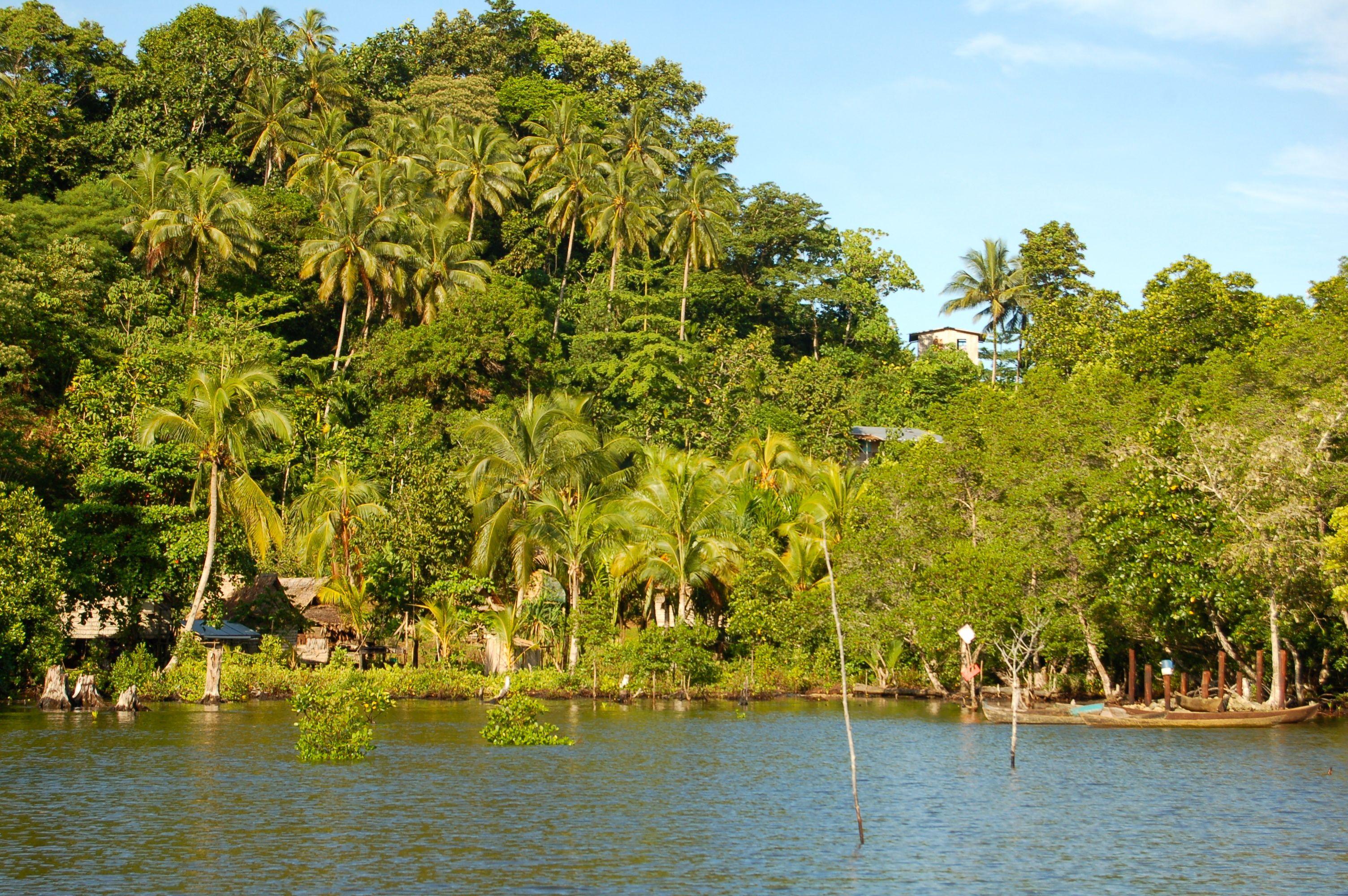 Choiseul Island #