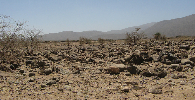 Climate Adaptation Resource Guide for Dryland & Semi-Arid ...