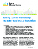 40591-0 - climate adaptation.