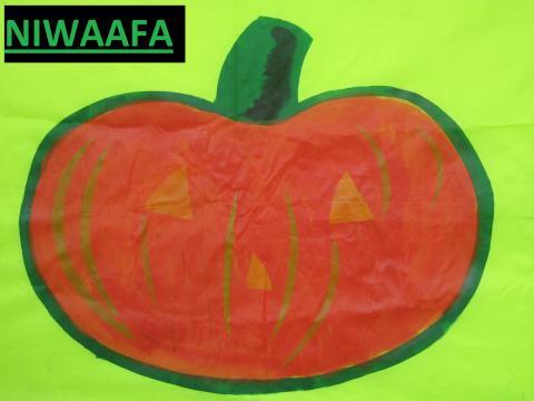 niwaafa logo - climate adaptation.