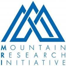 MRI logo: 3 blue entangled triangles looking like mountains