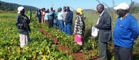 Farmers meet with extension service representatives in Dororo district, Mozambique.