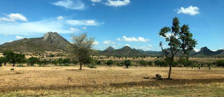 Farming in Malawi