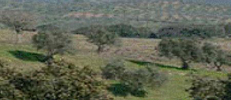 uk countryside