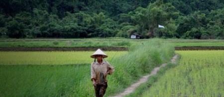 4f450326bd447laos - climate adaptation.