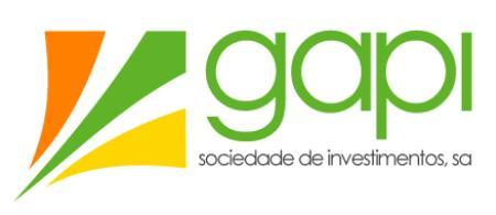gapi logo