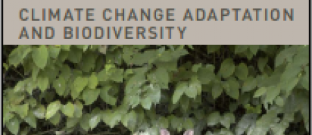 50eed964e6f6ebiodiversity-background-report-front-cover - climate adaptation.