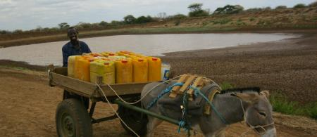 510ac43a8f3e7water-colection-from-water-pans-in-wajir - climate adaptation.