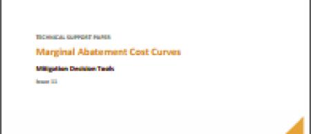 Marginal Abatement Cost Curves