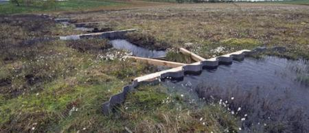 51ed178b6d2ffpicture-of-dammed-ditch-on-blawhorn-moss - climate adaptation.