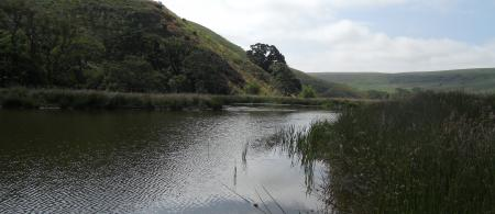 Wildfire Water Resource Pond
