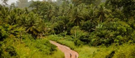 5370d60043ec9ghana-lush-environment-fjonahill - climate adaptation.