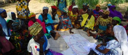 5450c70f5533213-cs-4-2niger - climate adaptation.