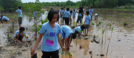 545691389bedd17-cs-5-1-thailand - climate adaptation.