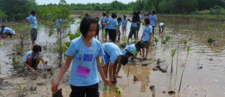 545691389bedd17-cs-5-1-thailand - climate adaptation.