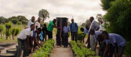 Drip irrigation system at Onamulunga School
