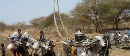A famiy of Falatta nomads making their abbual journey from Sudan to South Sudan. Credit: BBC World Service (https://www.flickr.com/photos/bbcworldservice)