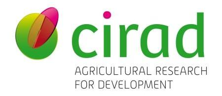 a-new-website-and-a-new-logo-for-cirad lightbox - climate adaptation.