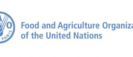 fao logo - climate adaptation.