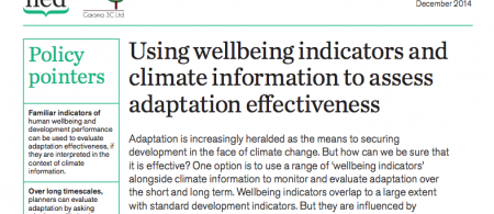 iied wellbeing - climate adaptation.