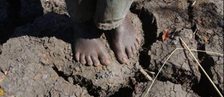 malawi action aid - climate adaptation.