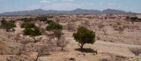pr kenya turkana2 - climate adaptation.