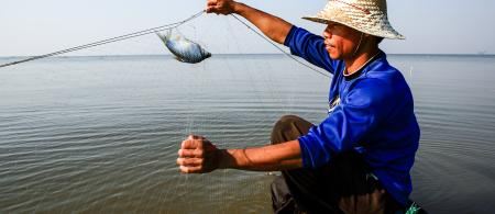 A fisherman in the Mekong delta catches a fish.