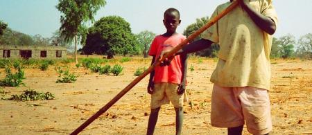 Pakalinding young farmers, The Gambia, by Gerry Popplestone
