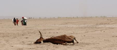 European Commission DG ECHO - Ethiopia: EU boosts aid in response to El Niño drought [Flickr]