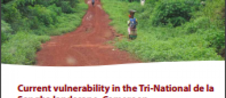 51921e502616ccurrent-vulnerability-in-the-tri-national-de-la-sangha-landscape-cameroon-front-cover - climate adaptation.