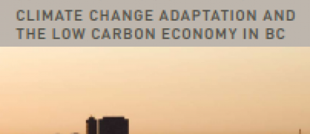 535682c4d893ccc-low-carbon-summary - climate adaptation.