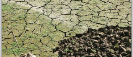 55780ae4234f2sk-rmavbild-2015-06-10-kl - climate adaptation.
