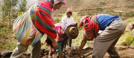 Smallholder farmers Peru©Enrique Castro-Mendívil / PromPerú