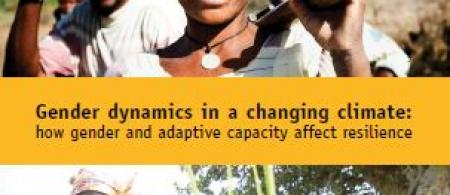 gender learning brief front cover 1 - climate adaptation.