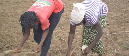 Women farming in Ghana