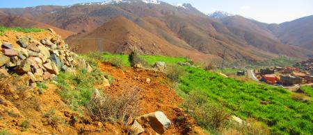 tree planting on hillside Moroccan village