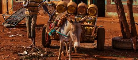 Kenya - April 07, 2018:Kenyan Waterman - Water Seller with Donkey and cart and He is going to water resource and He will fill the plastic barrels with the water.