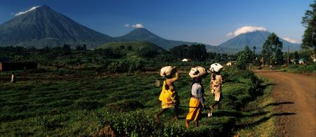Womans carrying loads on their heads with Virungas volcanoes in the background, viewed from Kisoro town, Uganda. From left to right, Mt. Muhavura, Mt. Mgahinga, Mt. Sabinyo